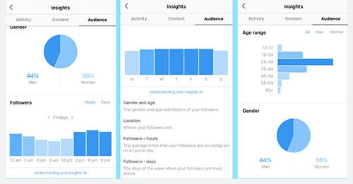 Instagram Profile Analytics